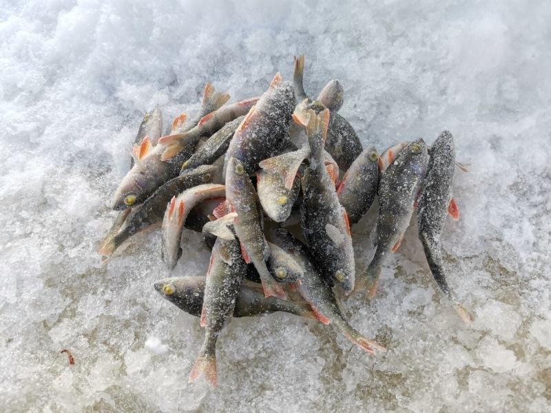 Докупил ещё мормышек. Пора готовиться к закрытию зимнего сезона рыбалки!