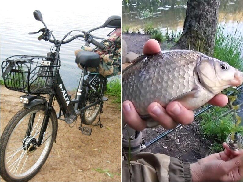 ЭЛЕКТРОвелосипед для рыбалки, куда не проедет авто. Недорогая новинка Green City E-Alfa (2021)