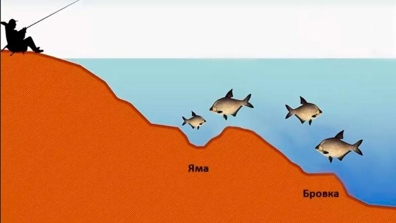 Как максимально точно найти перспективную точку при ловле на фидер