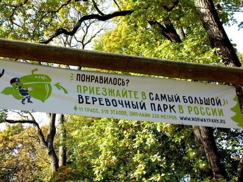 """Веревочный парк """"Елагин"""": экстрим, выносливость, антистресс"""
