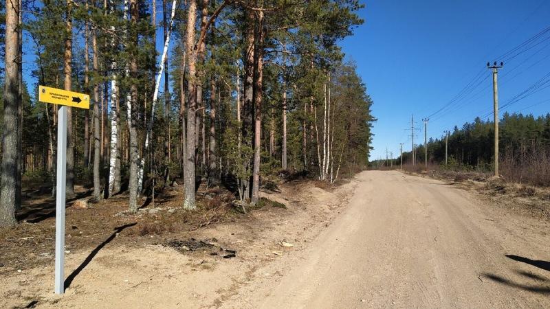 Экотропа «Гряда Вярямянселькя», маршрут на 11 км. Показываю, что там есть интересного