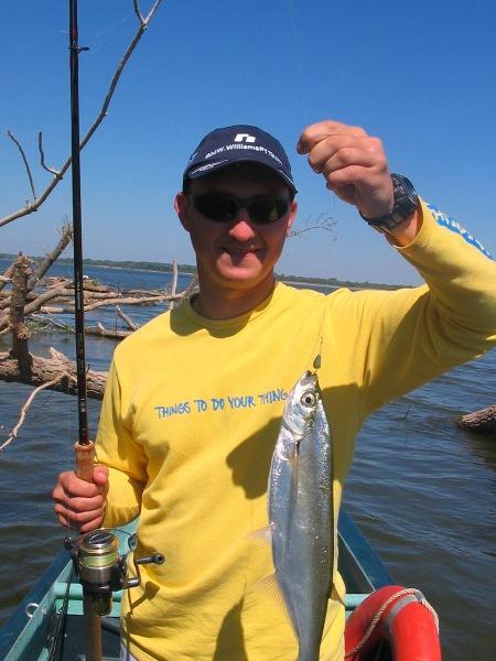 Интересные способы ловли чехони. Как я удивил егеря, который не поймал ни одной рыбки