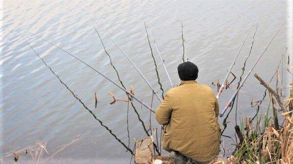 Сколько поплавочных удочек в рыбалке на карася оптимально?