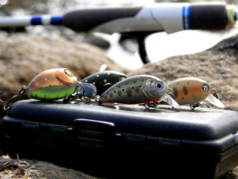 Демаскировка на рыбалке. Глупо ли использовать яркие аксессуары