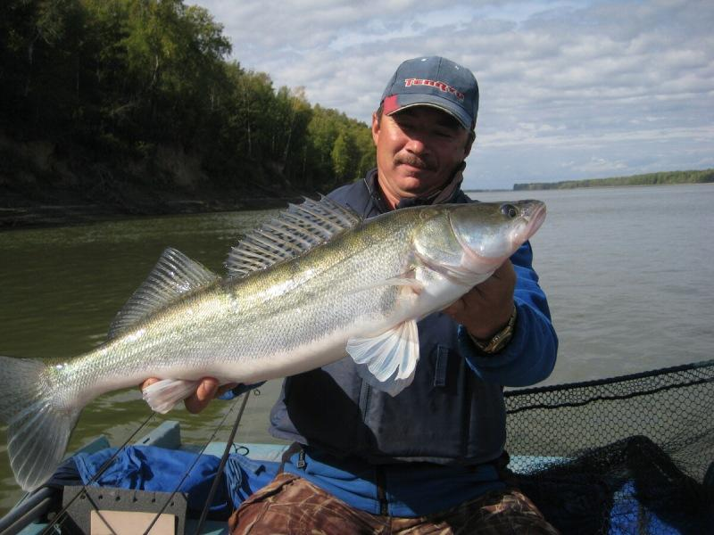Как найти перспективные места для ловли хищника на реке. Ловля на русле.