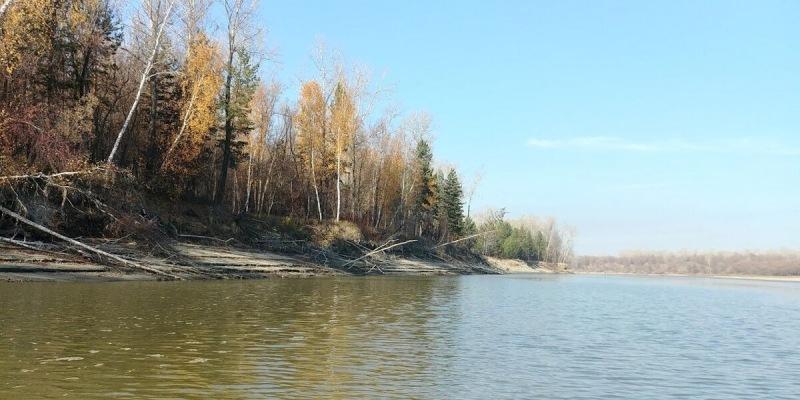 Ловля хищника на реке. Места ловли. Ловля в протоках.
