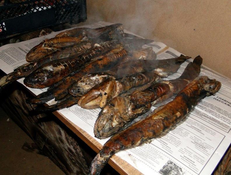 Очередная рыболовная байка или копчёный налим действительно резиновый