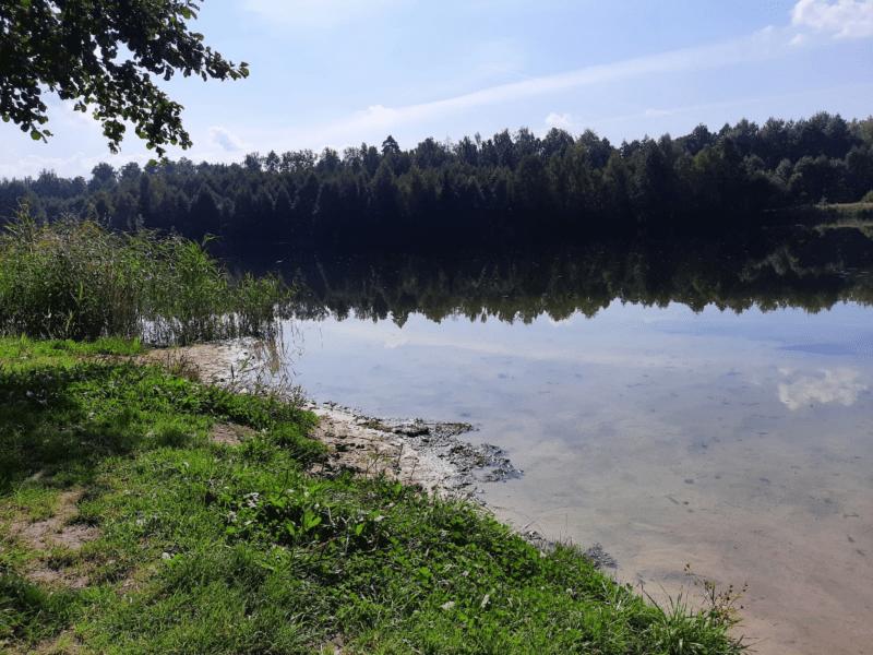 Особенности рыбалки осенью. Где искать рыбу?