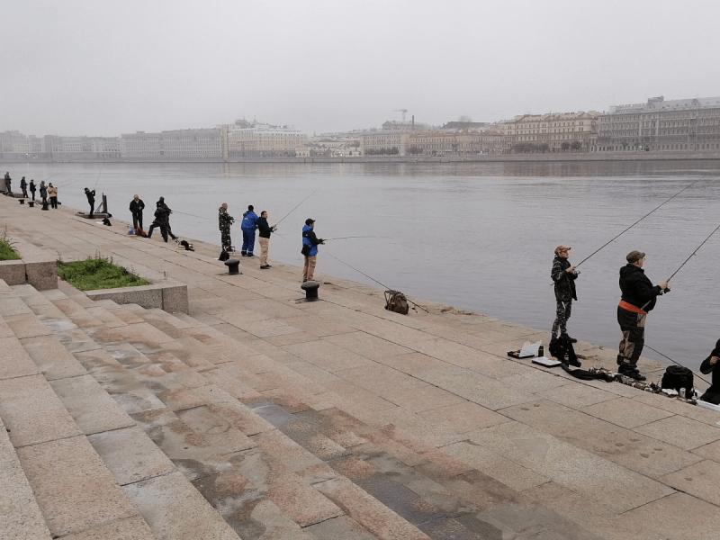 Рыбалка в Подмосковье.