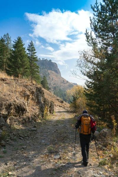 Треккинговые палки: зачем они нужны в походе, чем отличаются от палок для скандинавской ходьбы