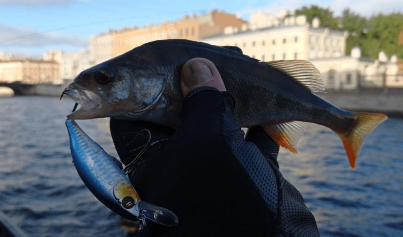 В каких случаях нужна подгрузка даже тонущего воблера и что это дает рыболову