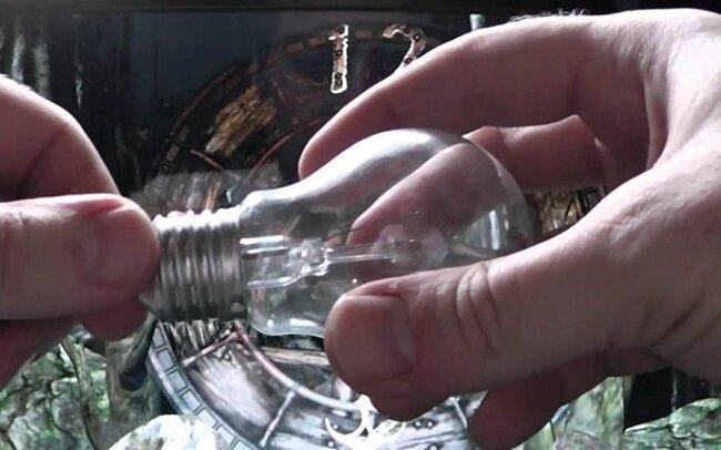 Как обычная перегоревшая лампочка помогает на рыбалке экономить мотыль